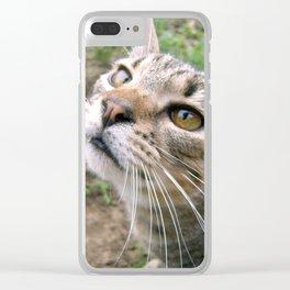 Farm Cat Clear iPhone Case