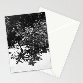 Malibu At Noon Stationery Cards