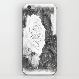 Pink Roses in Anzures 1 Charcoal iPhone Skin