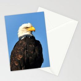 On Alert! Stationery Cards
