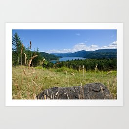 Riffe Lake Overlook Art Print