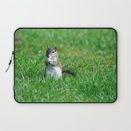 Sweet Snacking Squirrel Laptop Sleeve