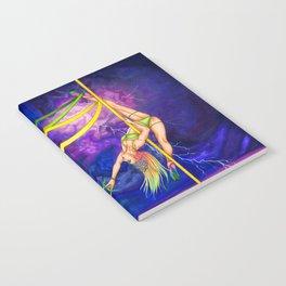Pole Stars - GEMINI Notebook