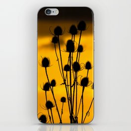 thistle silhouette sunset. iPhone Skin