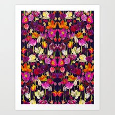 Pink and Orange Tulips Art Print