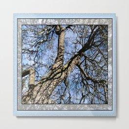 WINTER PEAR TREE Metal Print