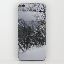 Winter in the Whites iPhone Skin