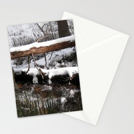Winter's Light Stationery Cards