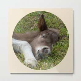 Sleep well Metal Print