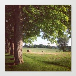 Country Landscape Canvas Print