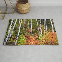 Alpine Loop Utah Rug