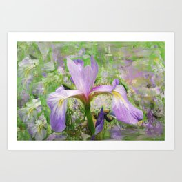 Iris Illusion  Art Print