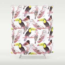 Large birds watercolor toucans, juncos, hoopoe and barn owl Shower Curtain