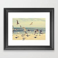 Seagulls Over Westhampton Beach Framed Art Print