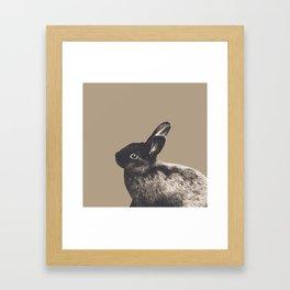 Little Rabbit on Sepia #1 #decor #art #society6 Framed Art Print