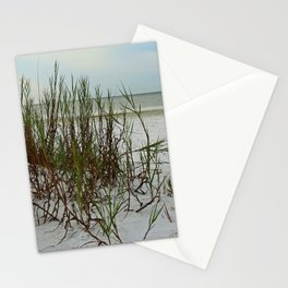 Along the Gulf Shore Stationery Cards