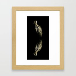Resting Reflection Framed Art Print