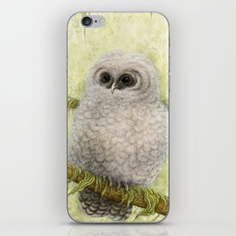 Northern Spotted Owls iPhone Skin
