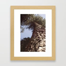 all the way to the top. Framed Art Print