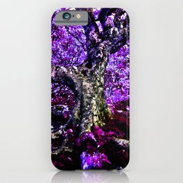 Craggy Gardens Memory iPhone Case