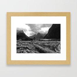 Tree debris, Milford Sound, New Zealand Framed Art Print