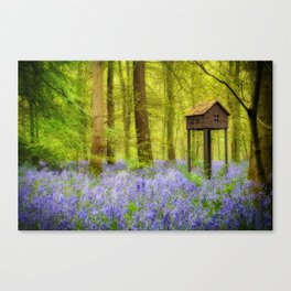Birdhouse with view Canvas Print