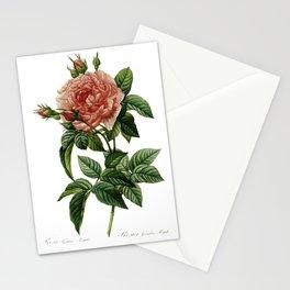 Botanical Illustration by Pierre-Joseph Redouté Stationery Cards
