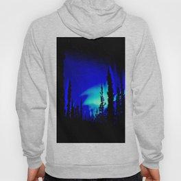 Aurora Borealis Forest Vibrant Hoody