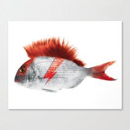 FISHY STARDUST Canvas Print