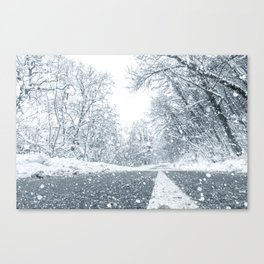 Winter forest snow road. Forest road winter snow view. Canvas Print