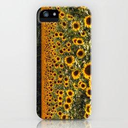 Sunflower Fields Of Dreams iPhone Case