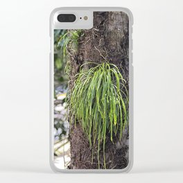 Epiphyte growth on tree in rainforest Clear iPhone Case