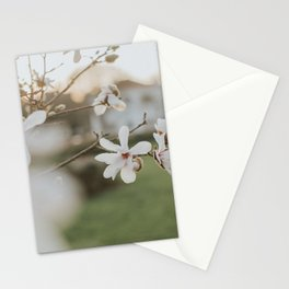 Pale Magnolia Stationery Cards