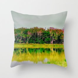 Hearns Lake Throw Pillow