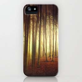 passage into the light iPhone Case