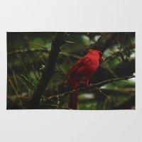 cardinal Area & Throw Rugs featuring Cardinal by Tarraf Photography
