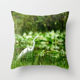 Great Egret in a Green Field Throw Pillow