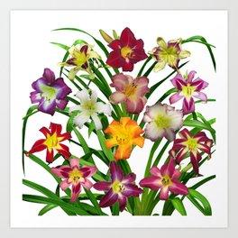 Display of daylilies II Art Print