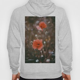 Poppy on 35mm Film. Analog Photography. Schwarzwald, Germany. Fine Art Nature Print. Wall Art. Hoody