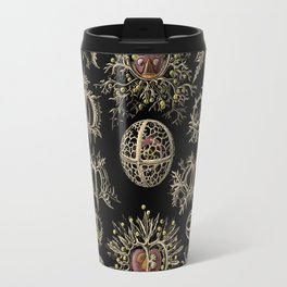 """""""Stephoidea"""" from """"Art Forms of Nature"""" by Ernst Haeckel Travel Mug"""