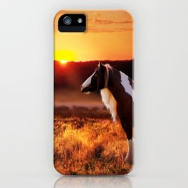 Gypsy Sunset iPhone Case