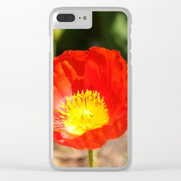 Red Poppy Flower Clear iPhone Case