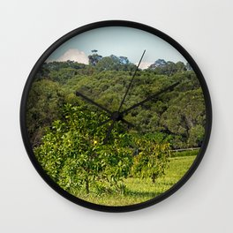 Beautiful citrus tree in rural area Wall Clock