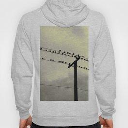 Birds on Lines Hoody