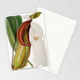 Nepenthes Veitchii Stationery Cards