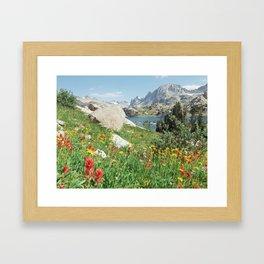 August Wildflowers in the Rockies Framed Art Print