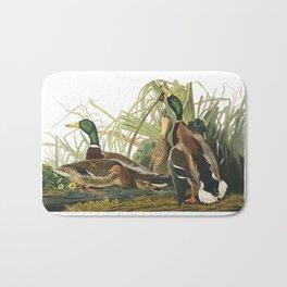 Mallard duck, Birds of America, Audubon Plate 221 Bath Mat
