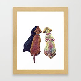 Three Amigos I Framed Art Print