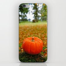 Autumn orange iPhone & iPod Skin