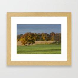 Fleeting Pleasures Framed Art Print